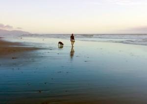 Wicket, rescue, dog, mutt, black, las vegas, san francisco, photographer, photography, pet, pets, doggy